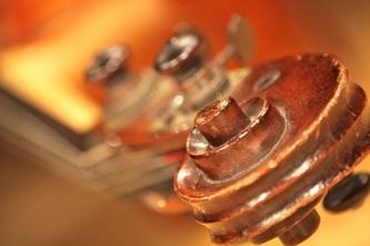 Kopf von Violine